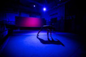 Il colore si fa spazio ph. Gianluca Naphtalina Camporesi @ Ipercorpo Festival